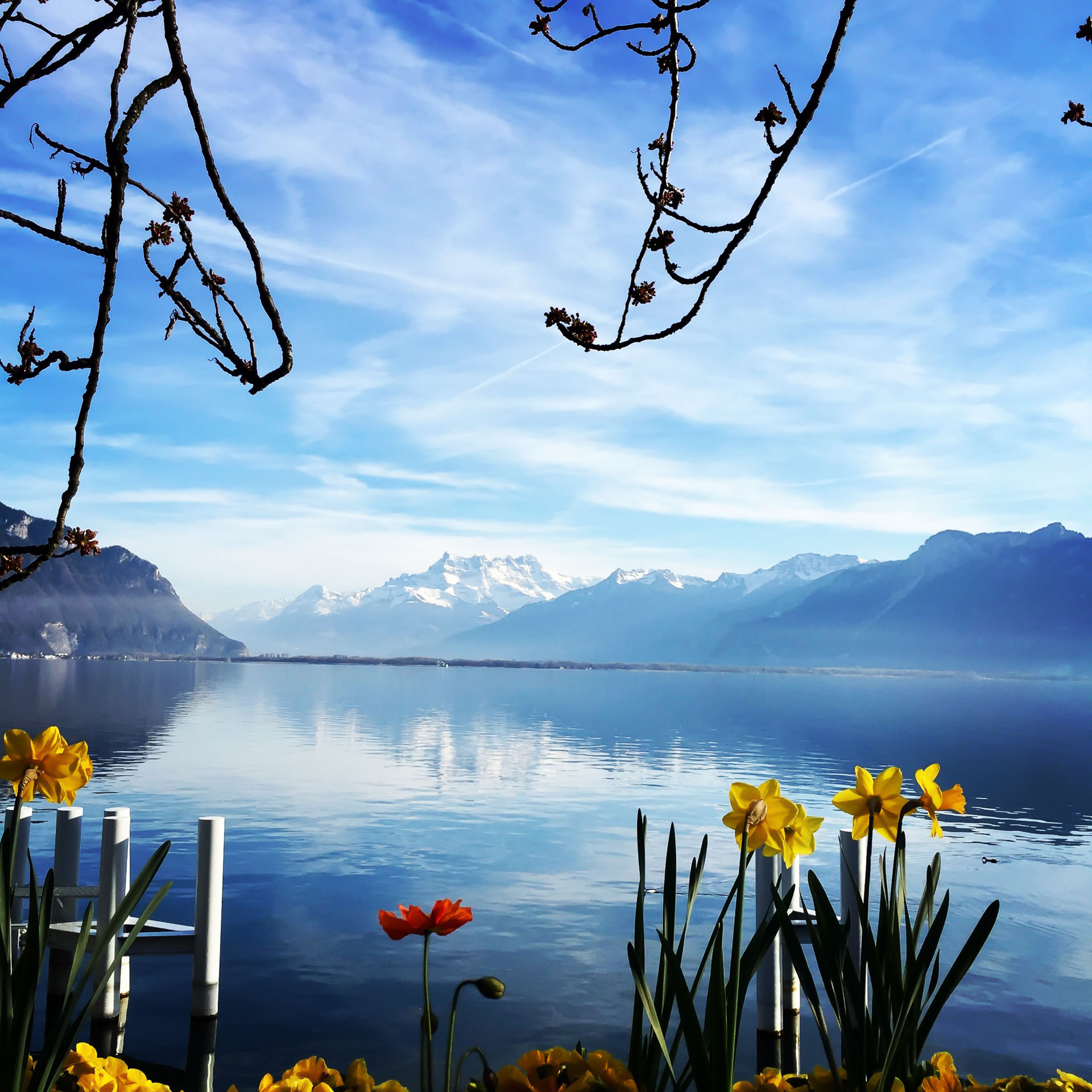 Stress relief depression montreux lake geneva vaud swiss complementary therapy